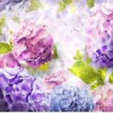 Фотообои Тематика Цветы